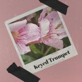 Keyed Trumpet fra Various Artists