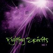 Fighting Spirits Vol. 1 by Fighting Spirits