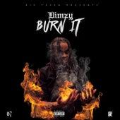 Burn It de Dimzy