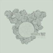 Thymus by Fraktal