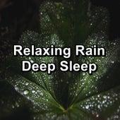 Relaxing Rain Deep Sleep fra Meditation Rain Sounds