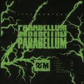 Parabellum de 1996montana