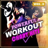 Powerful Workout Chart Hits, Vol. 3 de Various Artists
