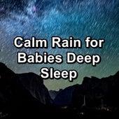 Calm Rain for Babies Deep Sleep de 125 Nature Sounds