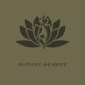 Distant Memory de Study Music