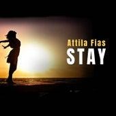 Stay (Solo Piano) by Attila Fias