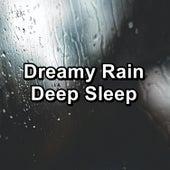 Dreamy Rain Deep Sleep by Nature Sounds Artists