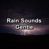 Rain Sounds Gentle fra Relaxing Rain Sounds