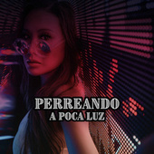 Perreando a poca luz by Various Artists