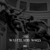 Wasteland Woes: The Mobile Covers by Piliro