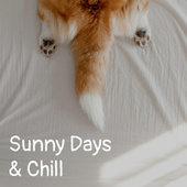 Sunny Days & Chill fra Various Artists