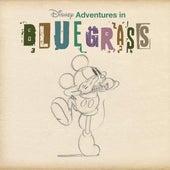Disney Adventures In Bluegrass di Various Artists