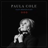 Black Mountain Blues by Paula Cole