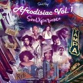 Afrodisiac SoulXperience, Vol.1 by Soul-Hop