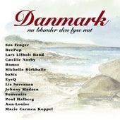 Danmark Nu Blunder Den Lyse Nat by Various Artists