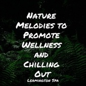 Nature Melodies to Promote Wellness and Chilling Out by Deep Sleep Relaxation