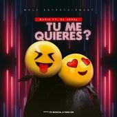 Tu Me Quieres? by Marie