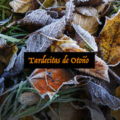 Tardecitas de Otoño by Various Artists