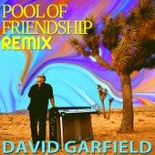 Pool of Friendship (Remix) fra David Garfield