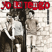 Andalucia (Live At WFMU Studios, East Orange, NJ, 4th Feb 1990) von Yo La Tengo