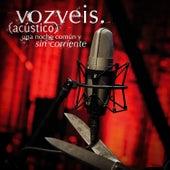 Una Noche Común y Sin Corriente (Live) by Voz Veis