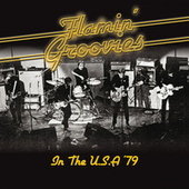 In The U.s.a. (Remastered) (Live At Keystone, Palo Alto, Ca, Aug '79) by The Flamin' Groovies