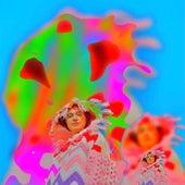 Disco Man (Hot Chip Remix) von Remi Wolf