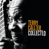 The Collected von Terry Callier