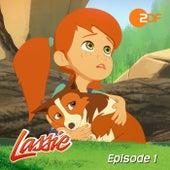 Episode 01: Freunde fürs Leben - Teil 1 (Das Original Hörspiel zur TV-Serie) von Lassie