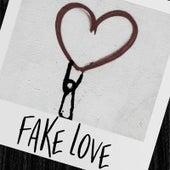 Fake Love von Nalee V