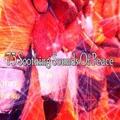 73 Soothing Sounds of Peace de Lullabies for Deep Meditation