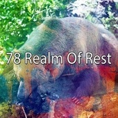 78 Realm of Rest by Deep Sleep Music Academy