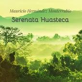 Serenata Huasteca de Mauricio Hernandez Monterrubio