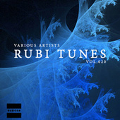 Rubi Tunes, Vol. 020 by Various Artists
