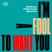 I'm a Fool to Want You by Andreas Toftemark