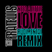 Need a Little Love (Rudimental Remix) de The Fratellis