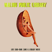 Malibu Public Library: Lost Euro-Funk Jams & Library Music by Various Artists