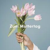 Zum Muttertag von Various Artists
