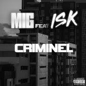 Criminel de Mig