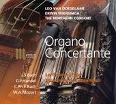 Organo Concertante by Leo van Doeselaar