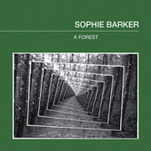 A Forest by Sophie Barker