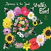 Blossoms In The Street by Wallis Bird