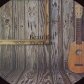 Beautiful Blues Beats fra Various Artists