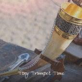 Tiny Trumpet Time de Various Artists