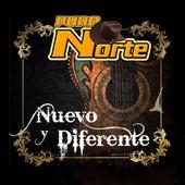 Nuevo y Diferente de Puro Norte