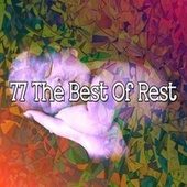 77 The Best of Rest by Ocean Waves For Sleep (1)