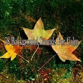 58 Background Sounds for Calm von Massage Therapy Music
