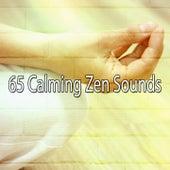 65 Calming Zen Sounds by Meditation Spa