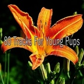 80 Tracks for Young Pups de S.P.A