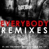Everybody Remixes de Wax Tailor
